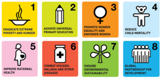 mdgs2.png